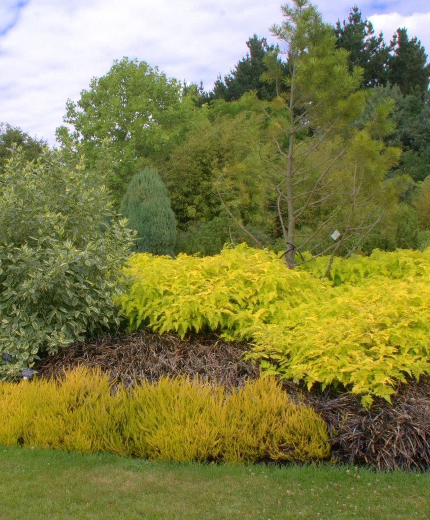 Sir Harold Hillier Garden, Romsey