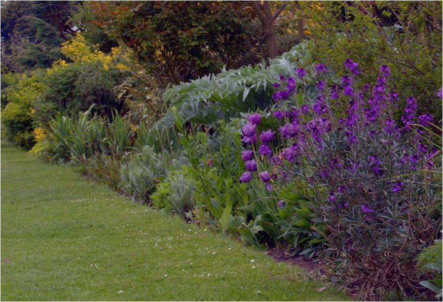 Waterperry Gardens - spring border