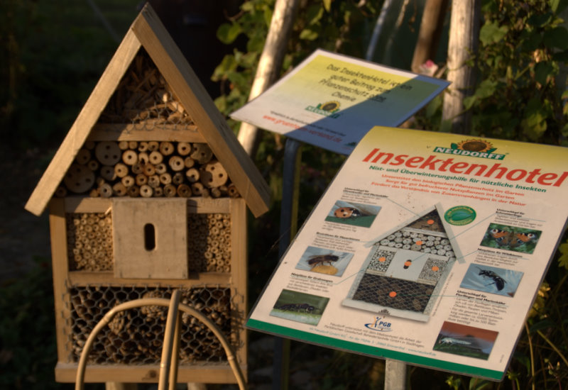 Insect hotel seen in a garden in Germany