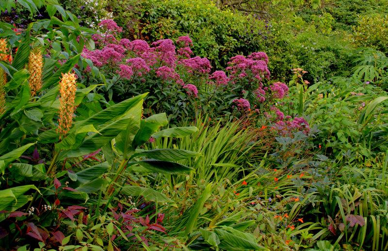 Escape To Cornwall  Landscape And Garden Design Blog