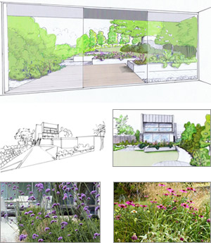 Cornwall coastal garden design