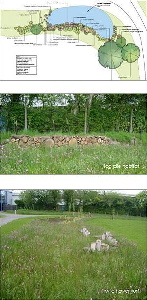 Landscape And Garden Design In Sussex